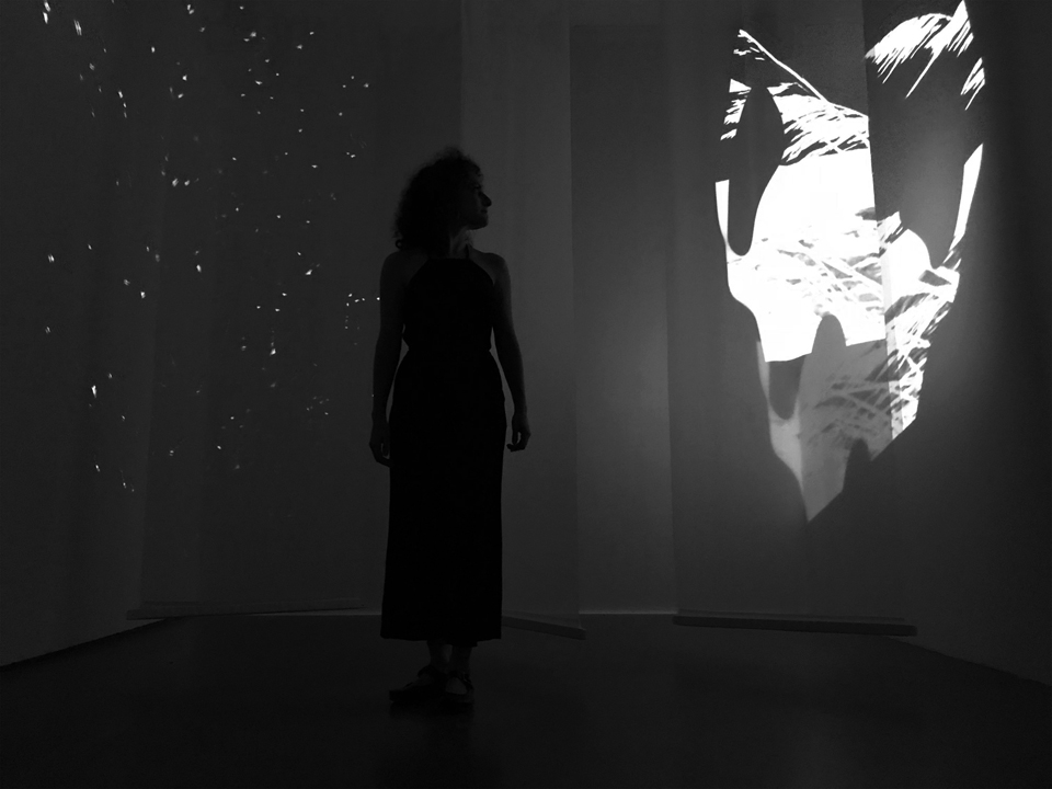 Le Ballet De La Nuit (12th Hour) Installation